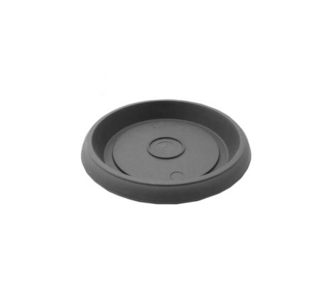 grey plate